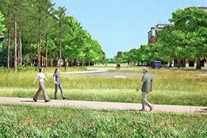 Carolina North Greenway Sketch